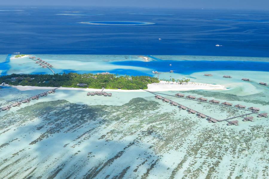Gili Lankanfushi: Andrea's Favourite