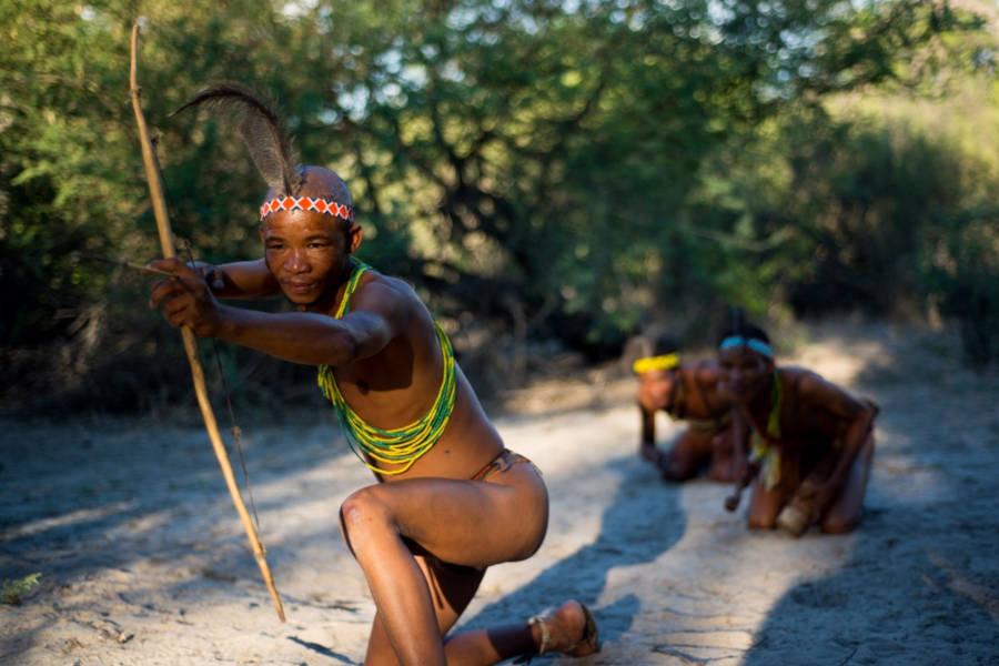 Botswana: Let it Be Wild!