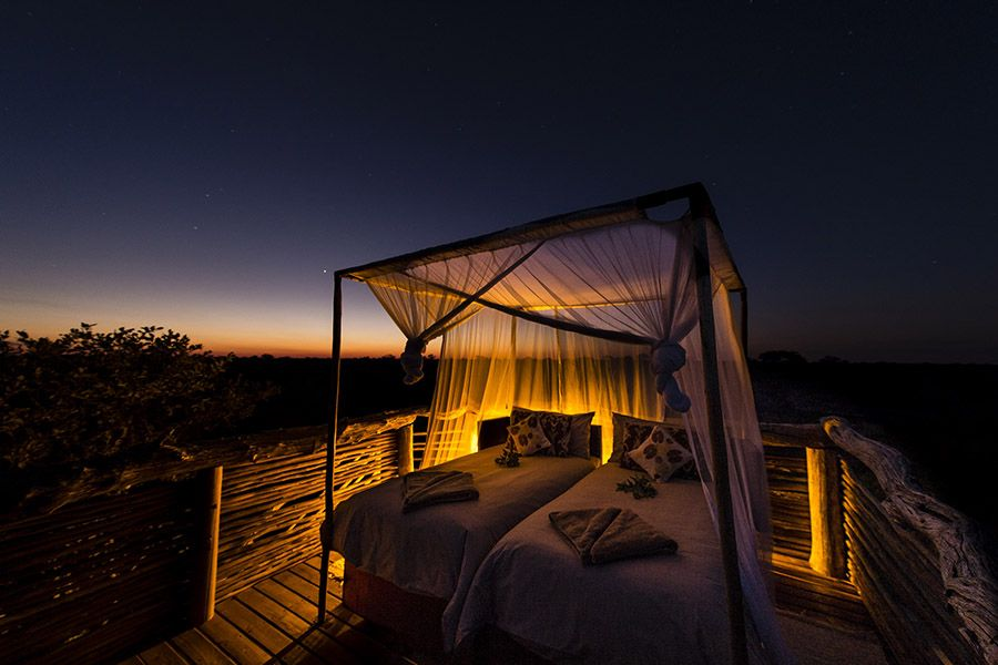 Botswana: Skybeds & Game