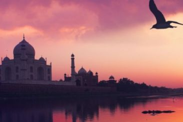 The Ultimate Golden Triangle Tour