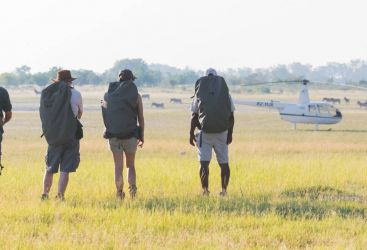 Ultimate Botswana: Walking Heli-Safari