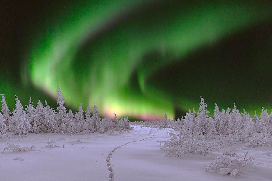 Capturing Auroras