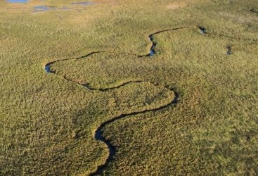 Okavango: The Beating Heart of Botswana