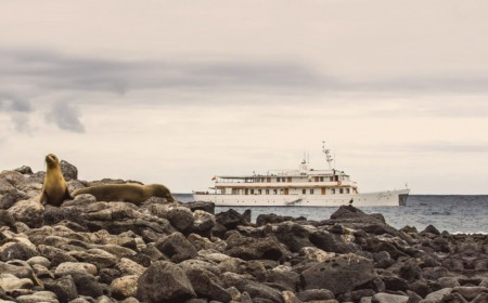Grace Kelly Yacht Galapagos